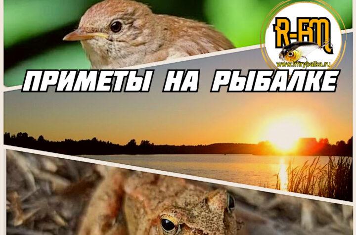 zakat-lyagushki-i-solovej-narodnye-primety-na-rybalke