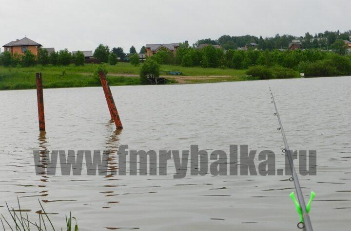 brakonerstvo-sergievo-posadskogo-rajona