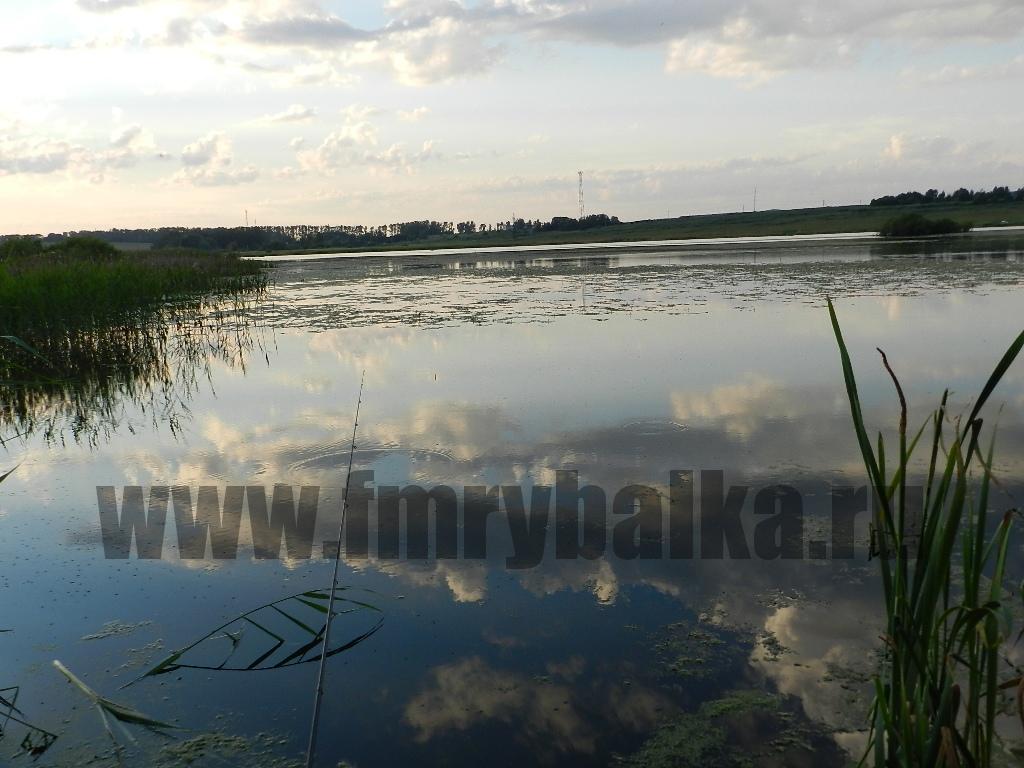 karas-v-sergievom-posade-www.fmrybalka.ru
