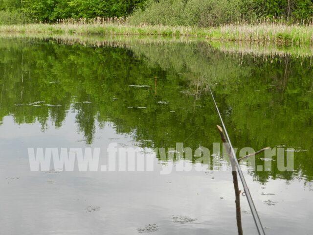 vidimost-poplavka-wormix-401-na-vode-www.fmrybalka.ru