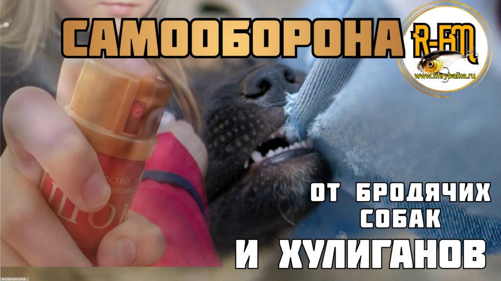 samooborona-ot-brodyachih-sobak-i-neadekvatov