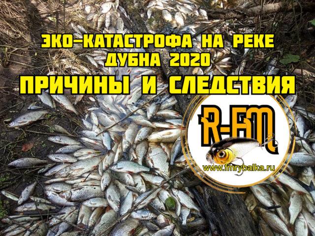 eko-katastrofa-na-reke-dubna-2020-prichiny-i-sledstviya
